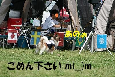 IMG_2546-s.jpg